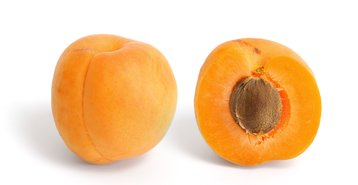 Apricot_and_cross_section.jpg