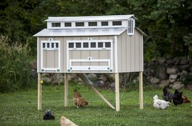 Cape Codder chicken coop