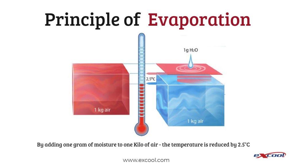 Evap - Excool.JPG