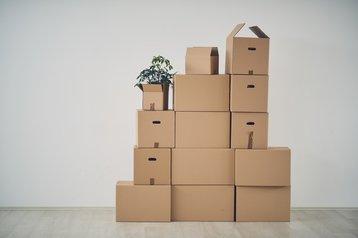 Little boxes.jpg