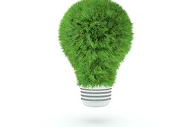 grass light bulb green energy efficient