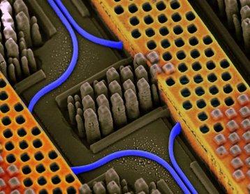 Information super highways inside an IBM Silicon Nanophotonics chip