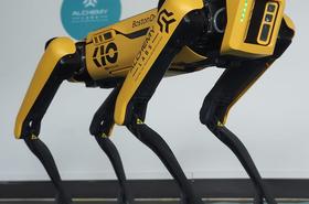KIO Perro Robot.png