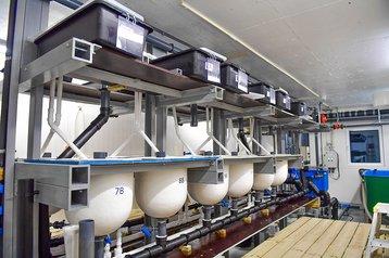 Lobster Farm Production Facility.jpg