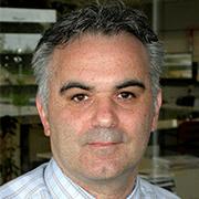 Luca Franzan.png