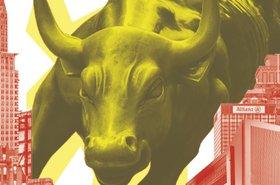Magazine bull