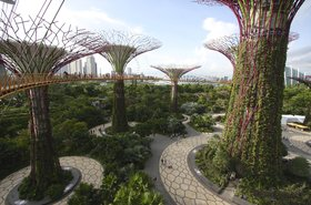 Solar-powered 'supertrees' at Gardens by the Bay, Singapore