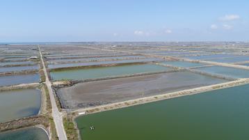 Google's Taiwan Solar Project