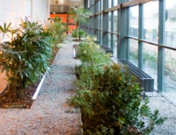 Telecity-Paris-greenhouse