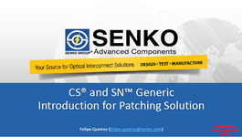 WP20_Senko_Generic Introduction for patching solution 2020_PT.portada.png
