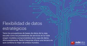 WP21_Redislab_strategic-data-flexibility_ES.portada.png