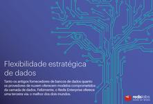WP21_Redislab_strategic-data-flexibility_PT.portada.png