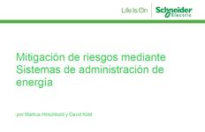 WP21_Schneider Global_Mitigating Risk_ES.portada.png