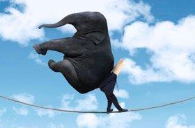 big data elephant cloud tightrope