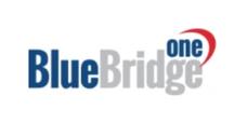 bluebride one logo.png