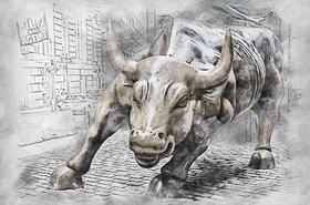 bull-3112617_1920.jpg
