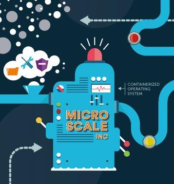 micro scalers square