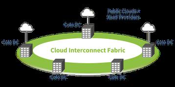 pluribus multi site interconnect.png