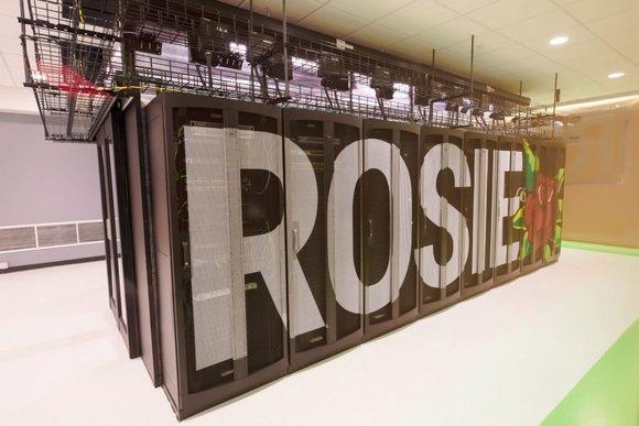 rosie2.jpg