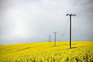 telephone line telco