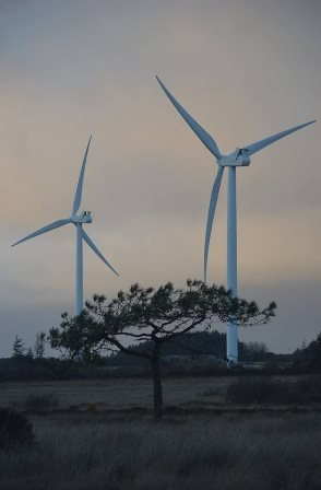windturbines.original.jpg
