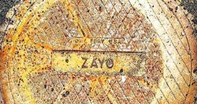 Zayo divides business into enterprise, infrastructure
